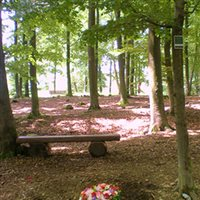 Friedhofswald